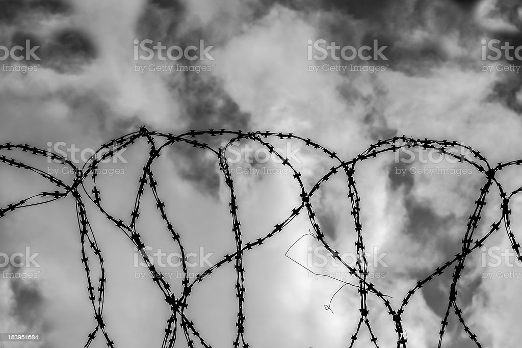 Barbed wire on sky background. stock photo