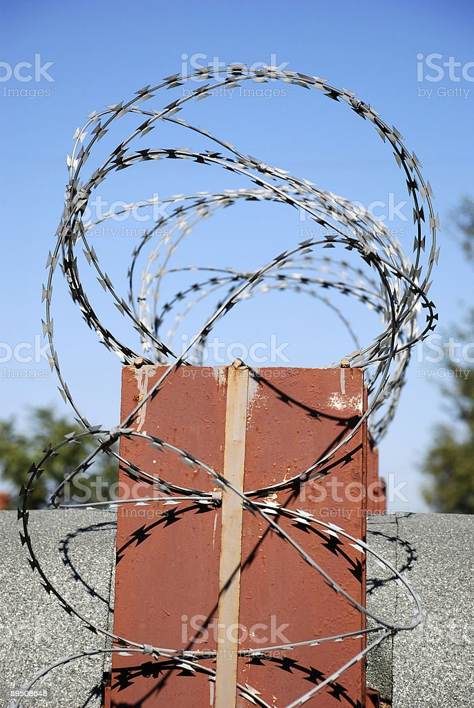 barbed wire on the concrete fence 免版稅 stock photo