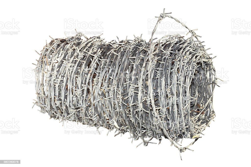 barbed wire over white stock photo