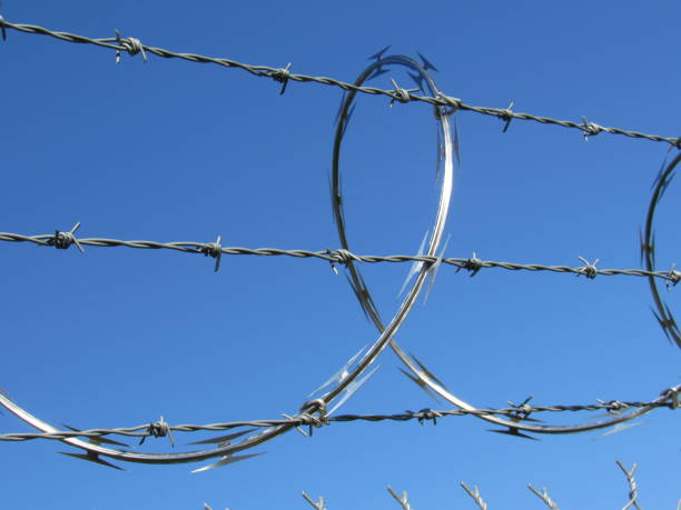 barbed wire - dianna dann narciso stock pictures, royalty-free photos & images