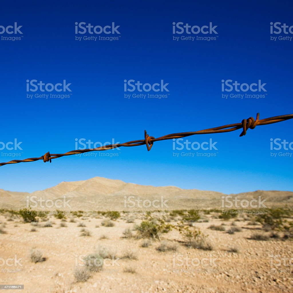 Barbed Wire royalty-free stock photo