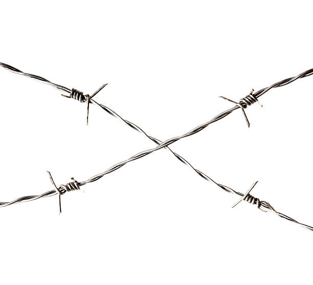 Royalty Free Barbed Wire White Background Pictures, Images ...