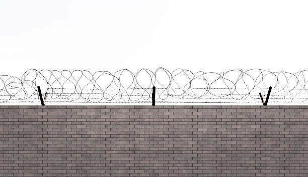 Royalty Free Barbed Wire Pictures, Images and Stock Photos - iStock