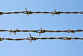 istock barbed wire 92191520