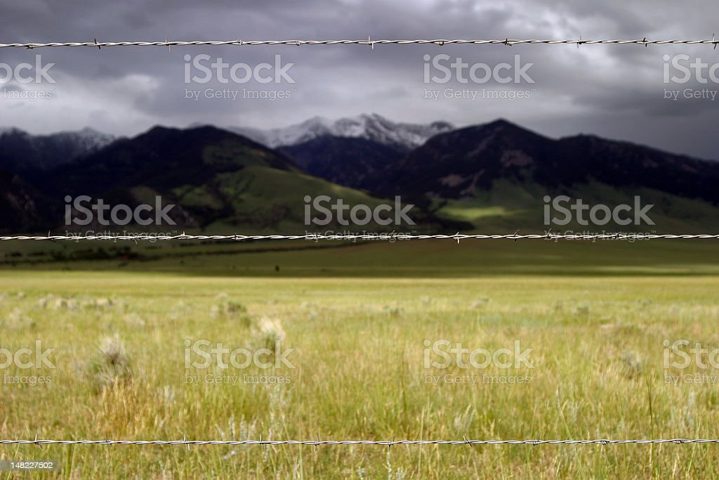 Barbed Wire Protecting the Land royalty-free stock photo