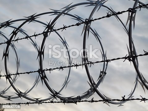Rows of looping barbed wire against free sky.