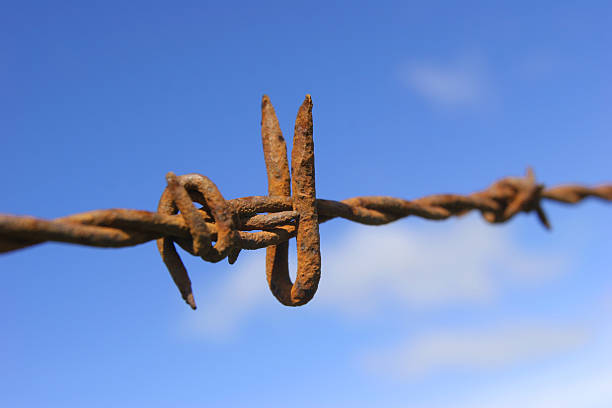 Barbed Wire Rusted  tetanus stock pictures, royalty-free photos & images
