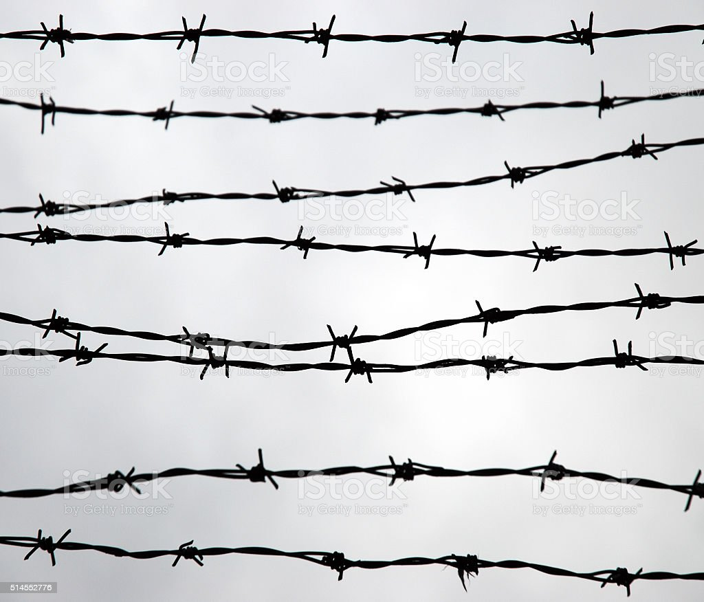 Barbed Wire Silhouette Stock Photo & More Pictures of Backgrounds ...