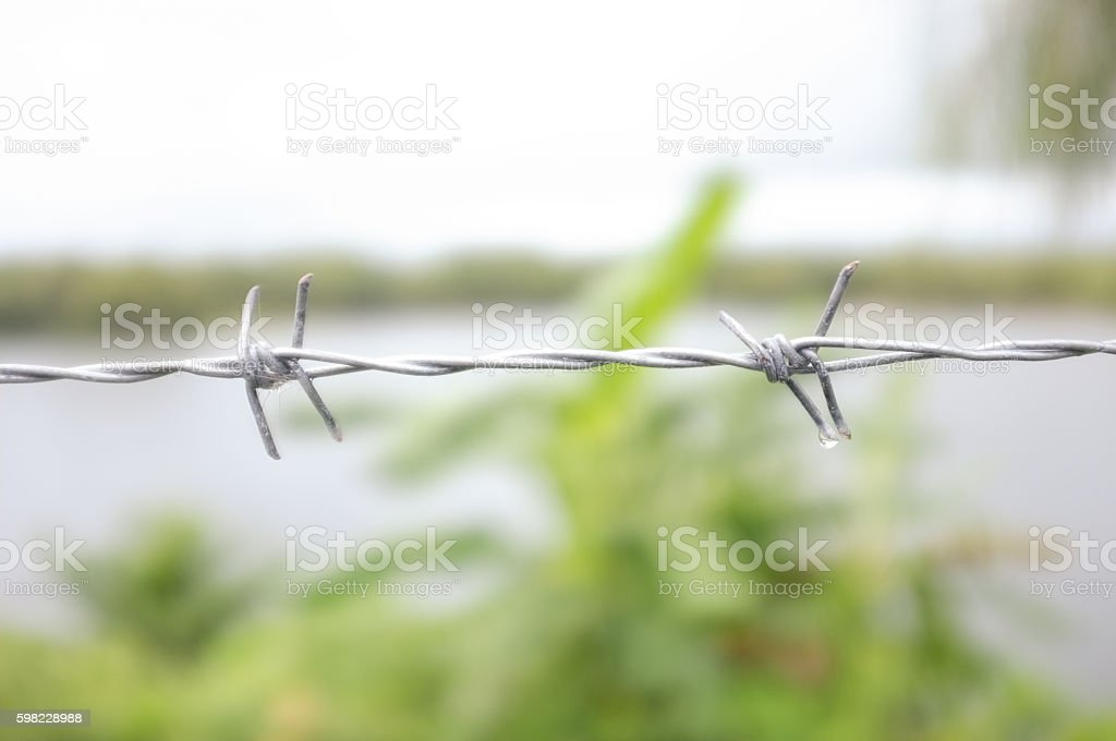 Barbed wire, Soft focus. Blur background foto royalty-free