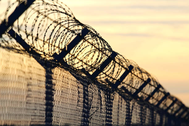 barbed wire steel wall against the immigrations in europe barbed wire steel wall against the immigrations in europe geographical border stock pictures, royalty-free photos & images