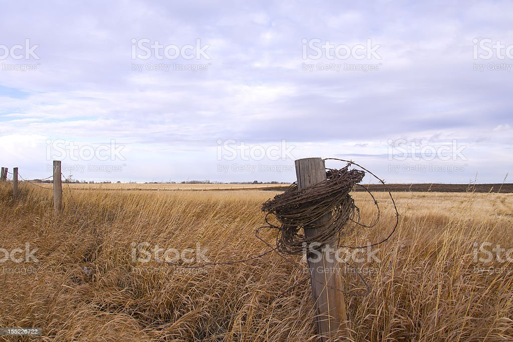 Barbed Wire Wrapped around a Post royalty-free stock photo