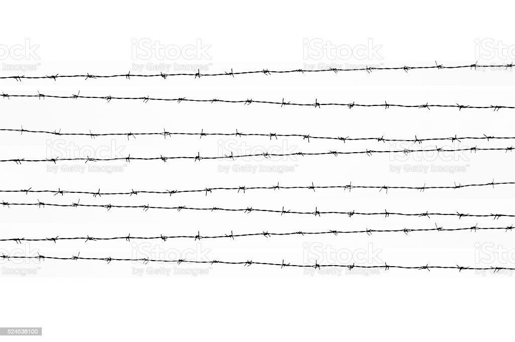 Barbed wires isolated stock photo