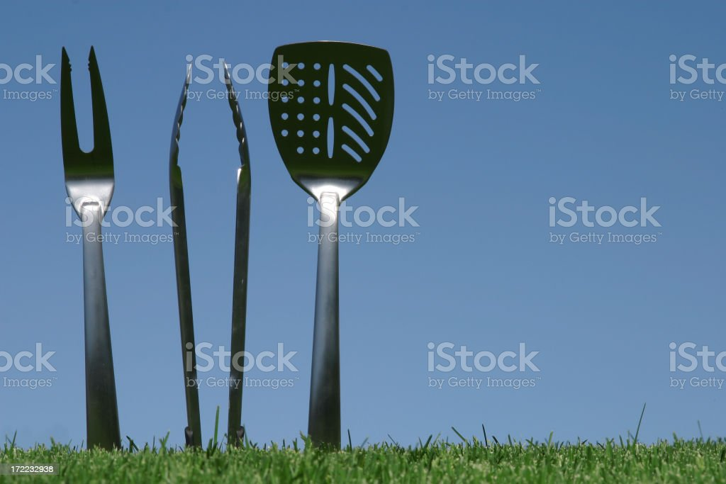 Barbeque Anyone? royalty-free stock photo
