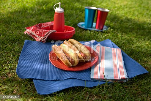 470765518 istock photo Barbeque Hot Dog, Grilled Picnic Summer Lunch Outdoors 471236907