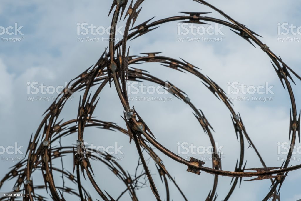 Barbwire Fence Closeup On Sky Barb Wire Fence Stock Photo & More ...