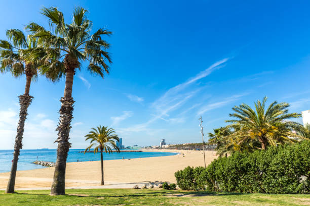 Skyline de Barcelona con playa - foto de stock