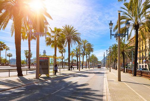 Barcelona, Spain. Road for public transport
