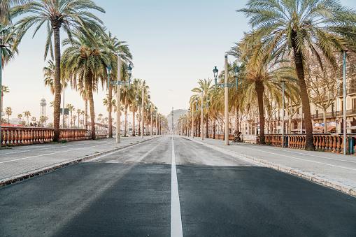 Barcelona sunrise at the street