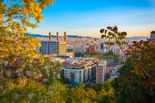 Barcelona's cityscape from Montjuïc mountain