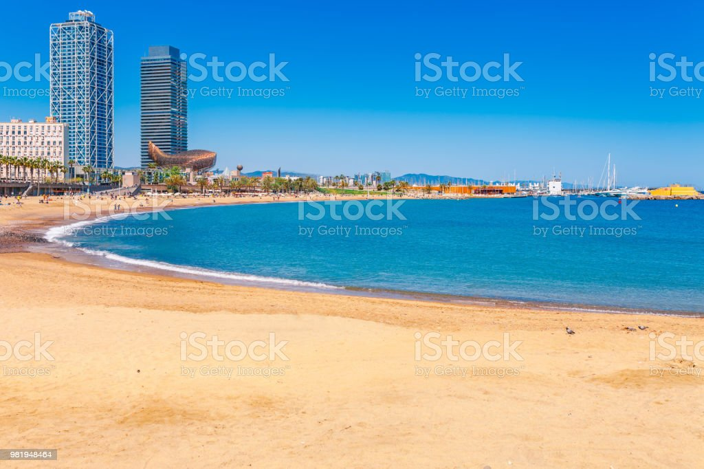 Playa de la Barceloneta en Barcelona. Bonita playa de arena con palmeras. Día brillante de sol con cielo azul. Famoso destino turístico en Cataluña, España - foto de stock