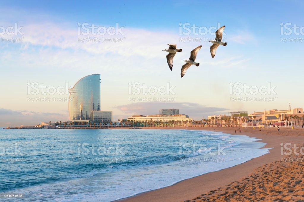 Playa de la Barceloneta en Barcelona con linterna colorida del cielo al amanecer. Paseo marítimo, playa, Costa de España. Suburbio de Barcelona, Cataluña - foto de stock