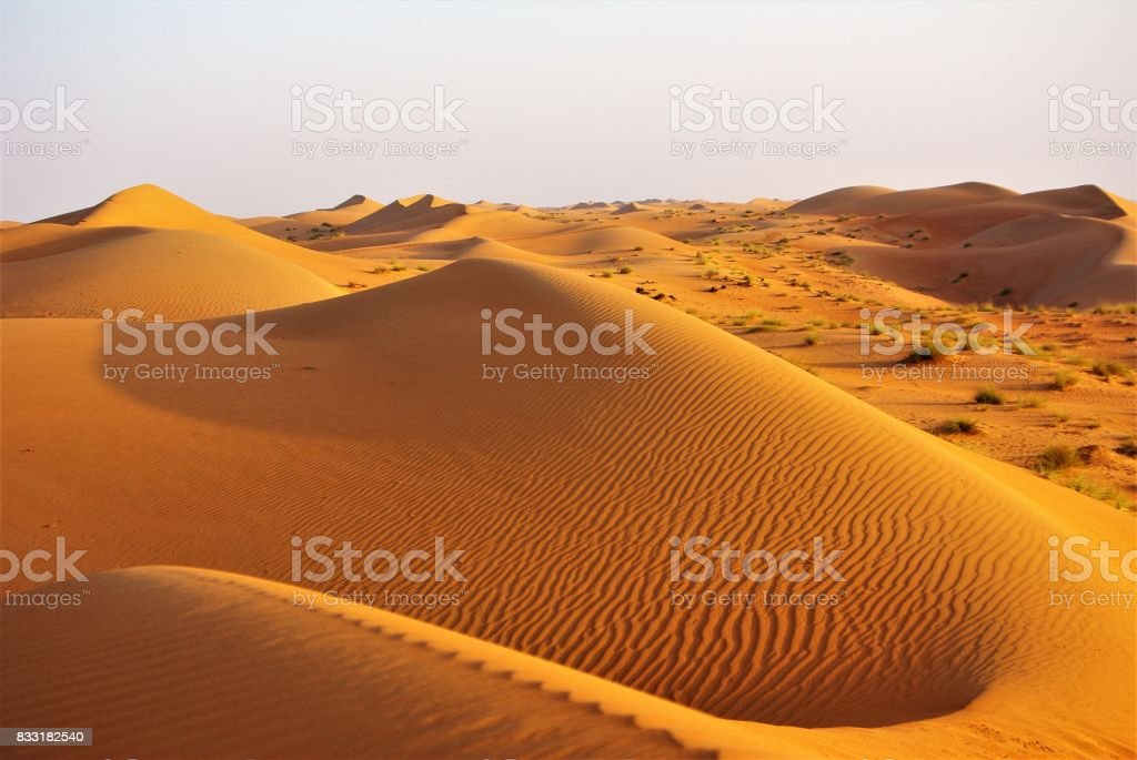 Barchans & Dunes - The Wahiba Sands of the Arabian Desert at Dawn stock photo