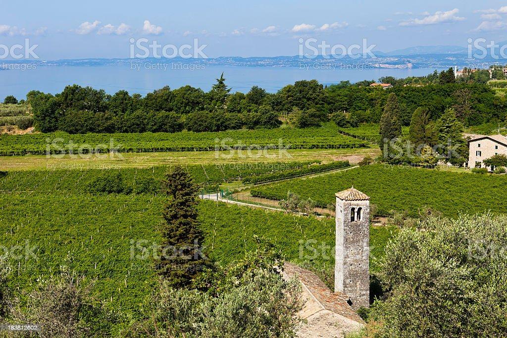 Bardolino Vineyards Overlooking Lake Garda, Italy stock photo