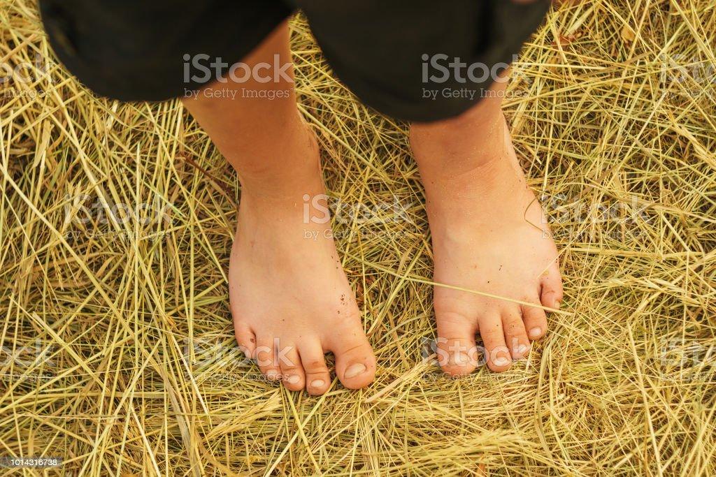 bare feet of a boy standing on grass – zdjęcie
