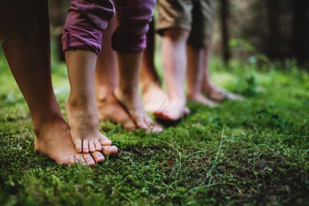 piedi nudi di famiglia con bambini piccoli in piedi nudi all'aperto nella natura, concetto di messa a terra. - forest bathing foto e immagini stock