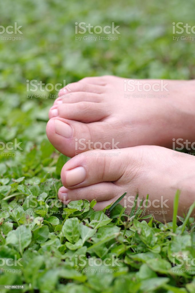 Bare female feet on grass with natural nails 2:3 - Foto stock royalty-free di Adulto