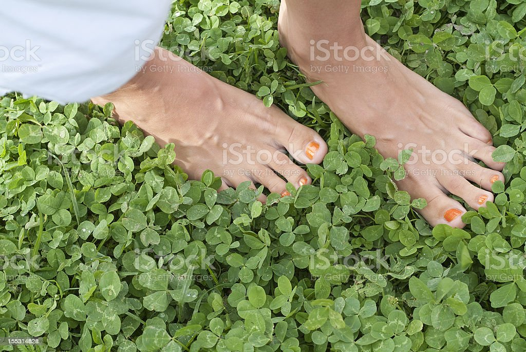 bare foot on clover meadow royalty-free stock photo