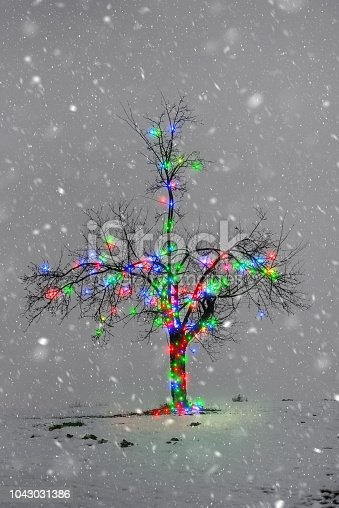 614958148 istock photo Bare Tree With Christmas Lights 1043031386