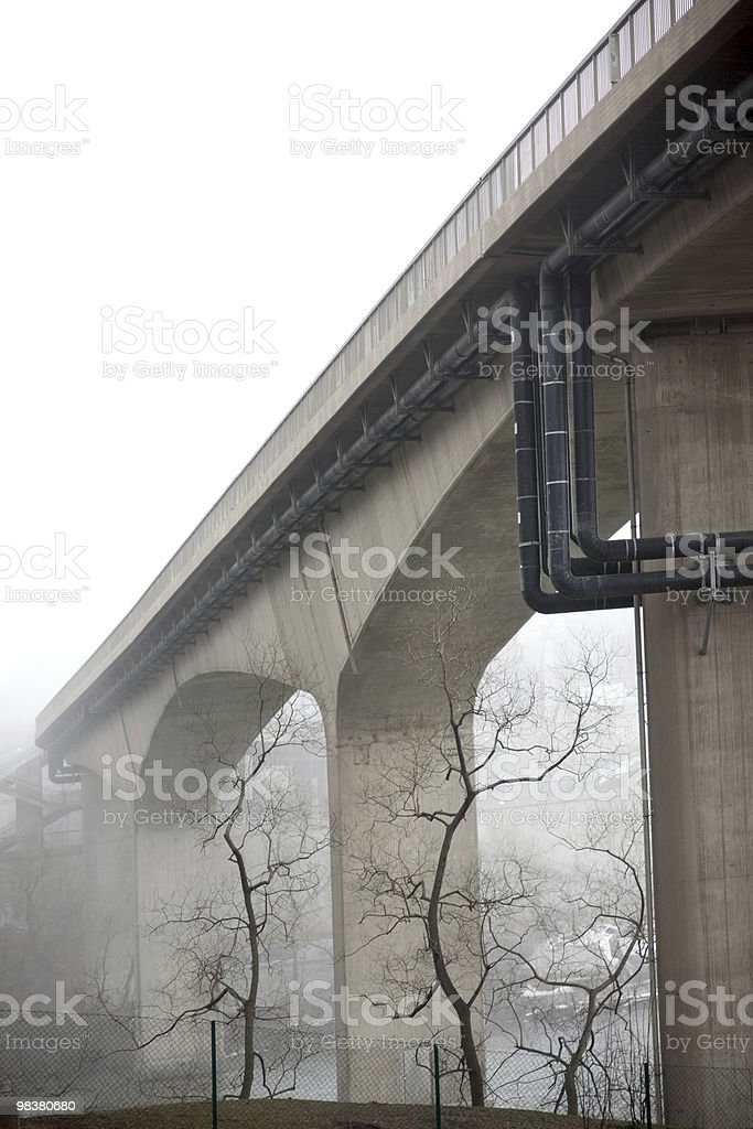 Bare tress under bridge in fog royalty-free stock photo