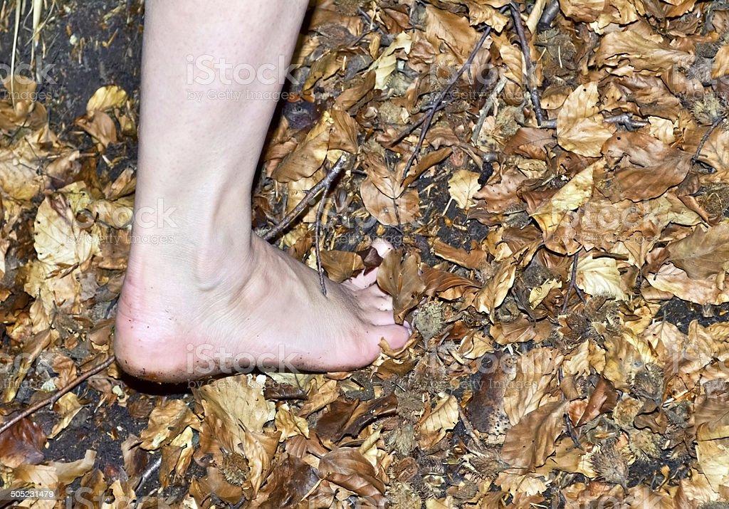 Barefoot hiker A stock photo