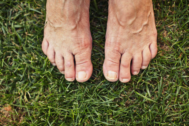 barefoot old person standing on the green grass - old man feet stock photos and pictures