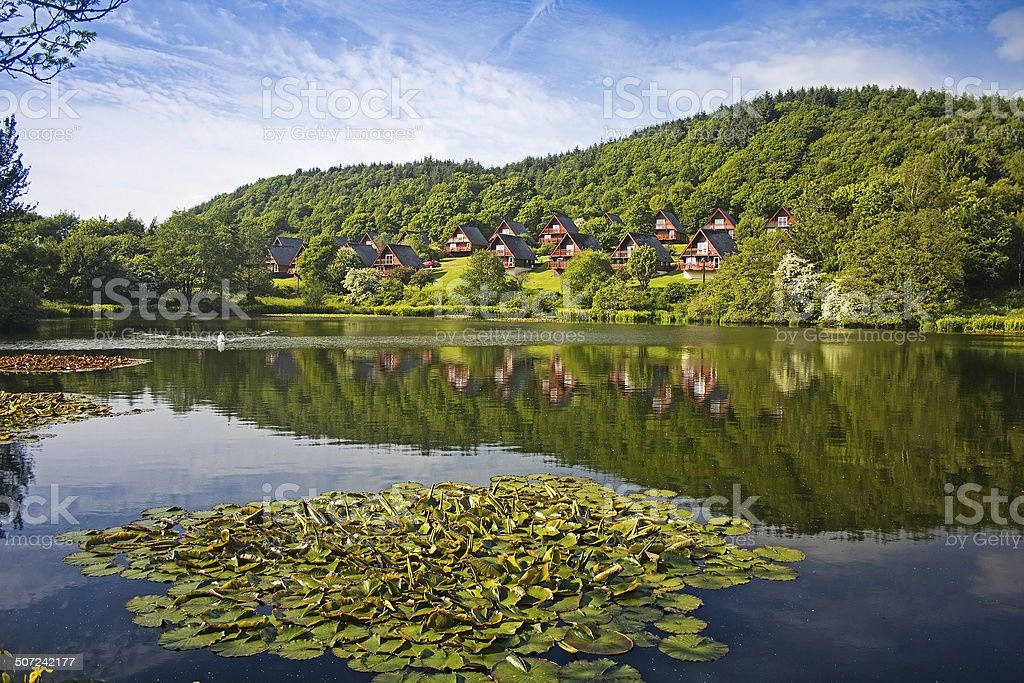 Barend Holiday Village, Loch and Lodges. Lillies Foreground stock photo