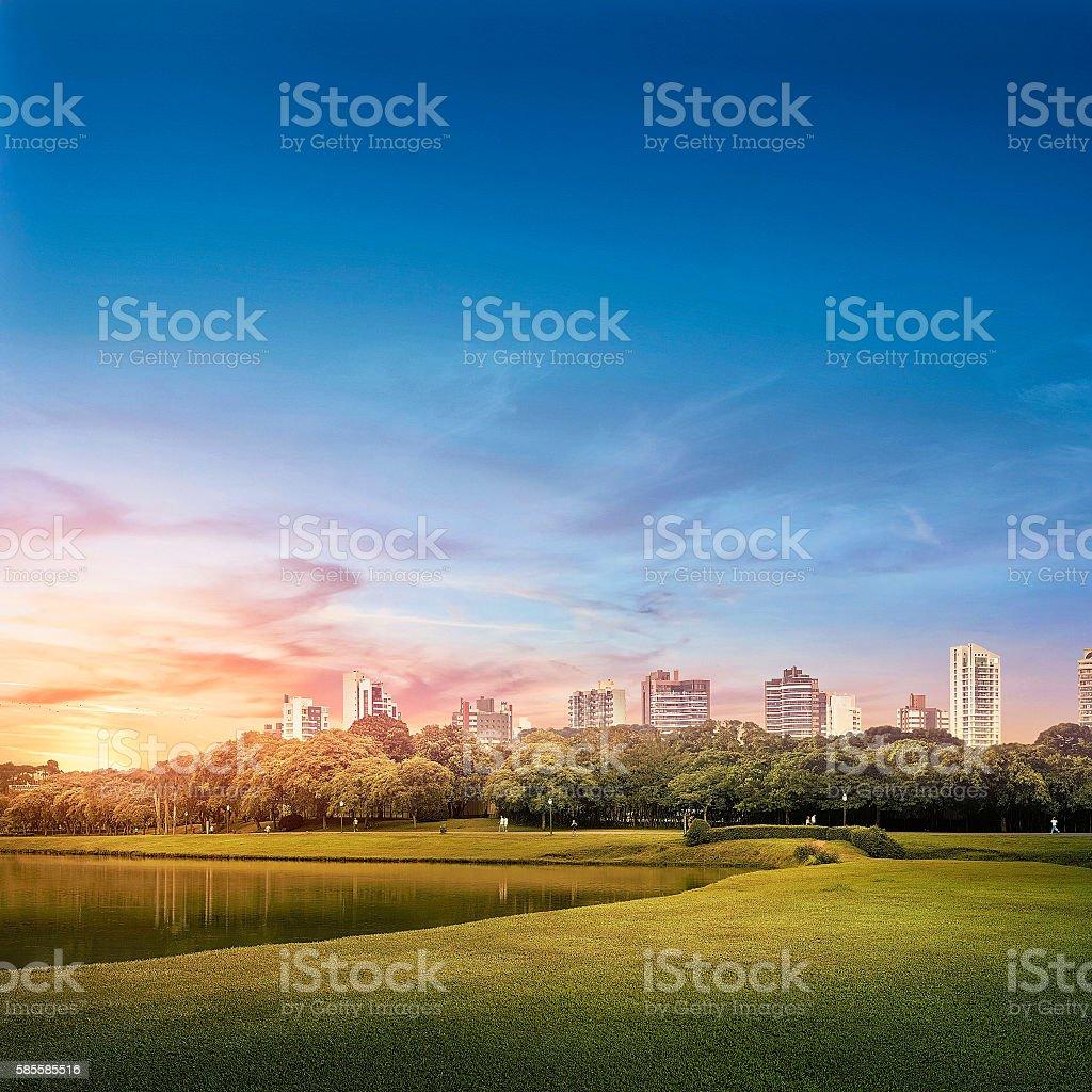 Barigui Park - Curitiba urban landscape - foto de acervo