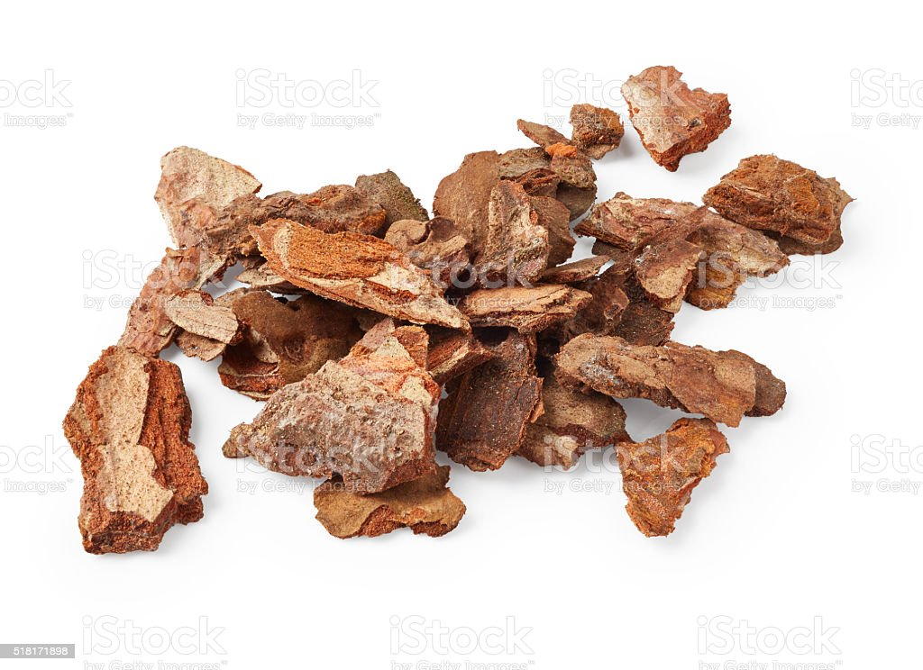 Bark tree stock photo