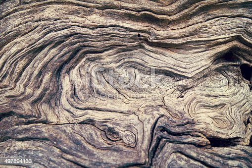 Macro of a bark of olive trees in black and white creates an abstract effect of texture