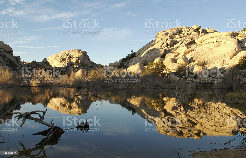 Barked Dam lake reflection royalty-free stock photo