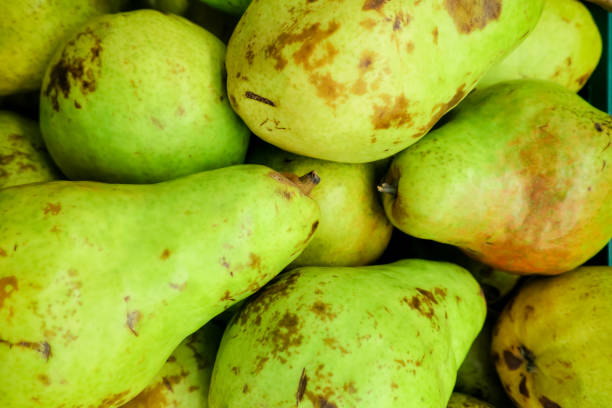 barlett pear - imperfection stock photos and pictures
