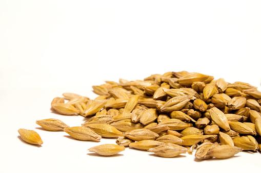 Barley grain on a white background