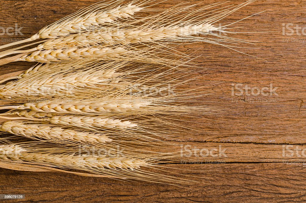 Barley grain on wooden table royalty-free stock photo