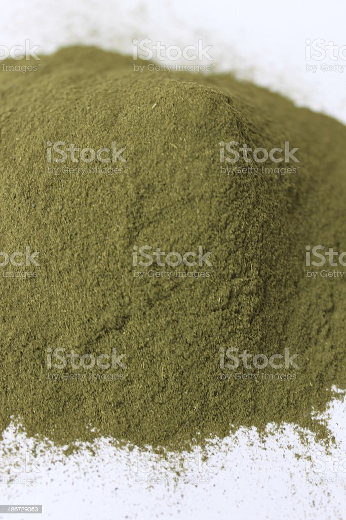 Barley Grass Powder stock photo