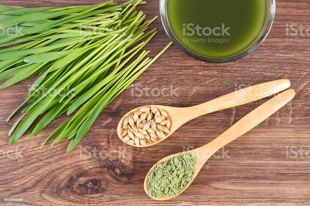 Barley grass with beverage and grain with young powder barley stock photo