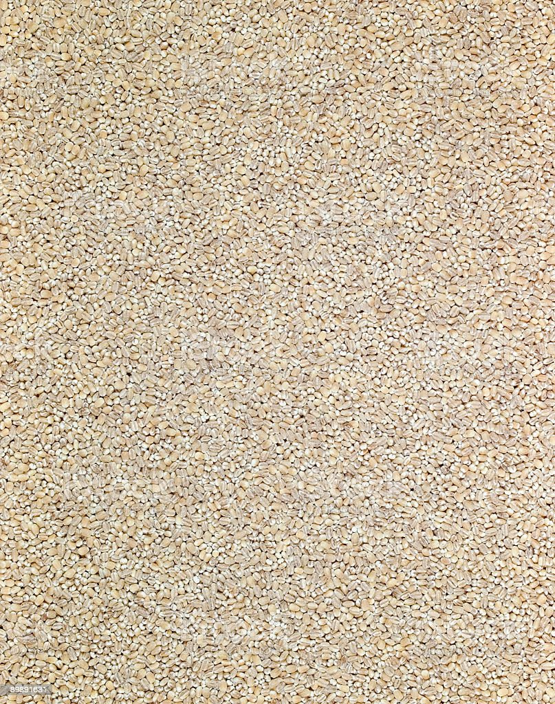 Barley Kernel royalty-free stock photo
