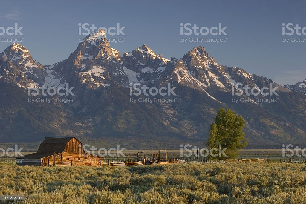 Barn and Teton Mountains royalty-free stock photo