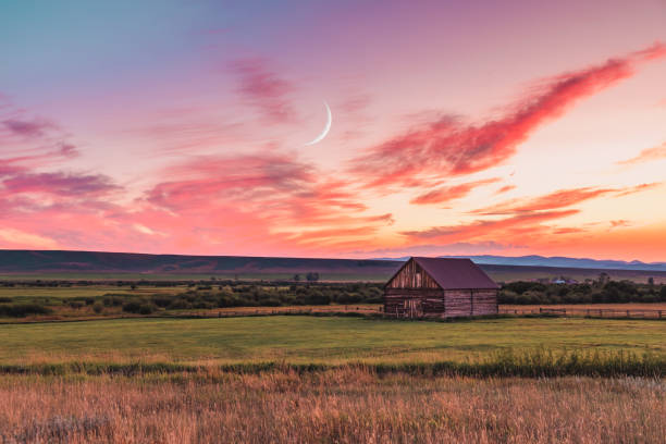 barn at sunset in rural montana - montana western usa stock pictures, royalty-free photos & images