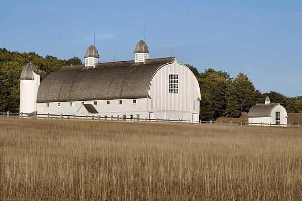 Barn Beauty stock photo