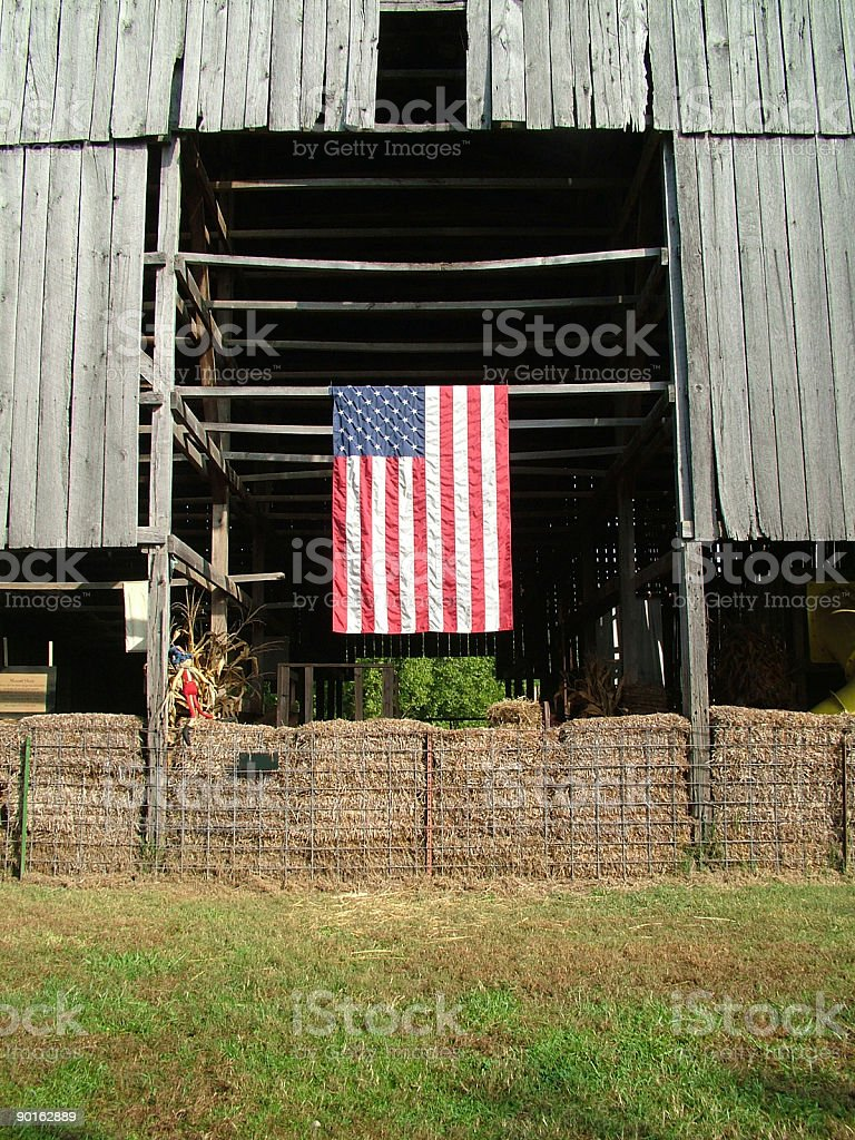 Barn Flies American Flag stock photo